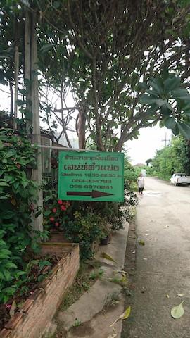 北タイ料理1